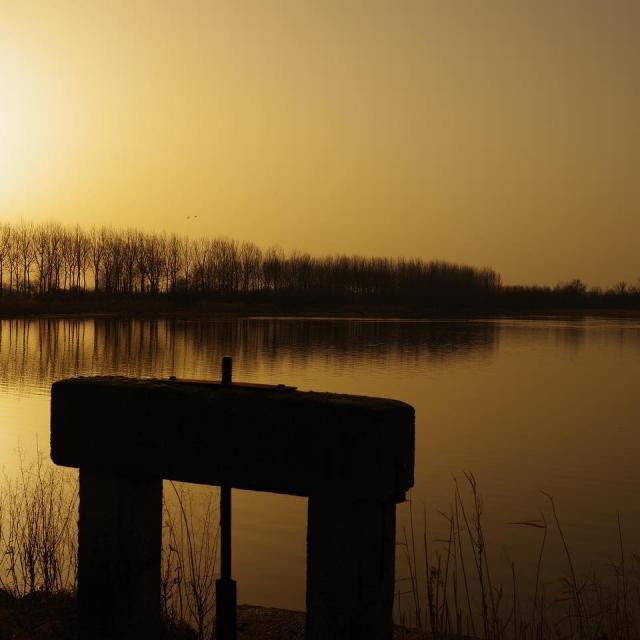 Thou d'un étang de la Dombes Instagram #dombes