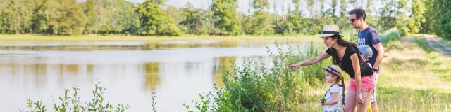 Balade au bord des étangs de la Dombes