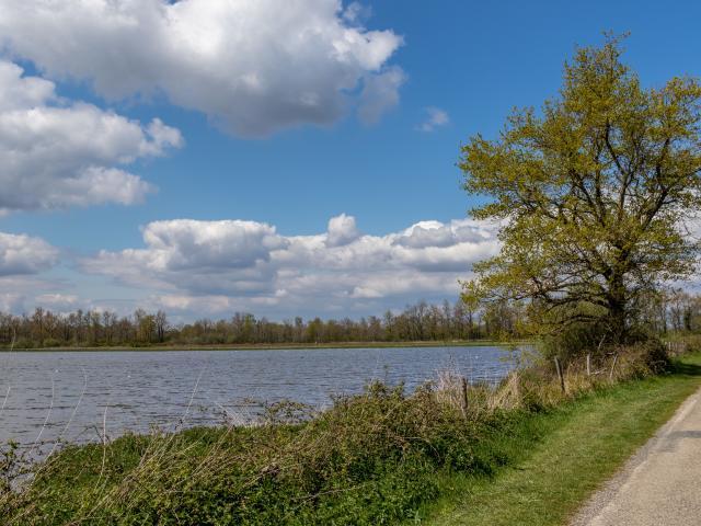 Circuit de randonnée proche de Lyon au bord des étangs