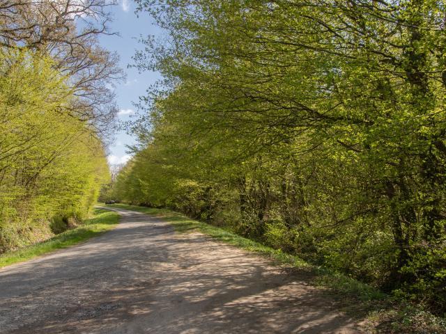 Circuit de randonnée proche de Lyon