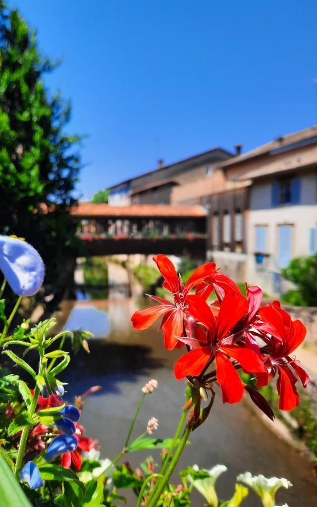 Pont fleuri Chatillon sur Chalaronne