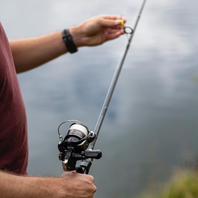Pêche dans un étang en Dombes