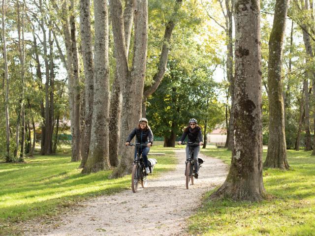 Balade à Vélo aux portes de la Dombes