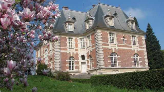 Chateau Joyeux