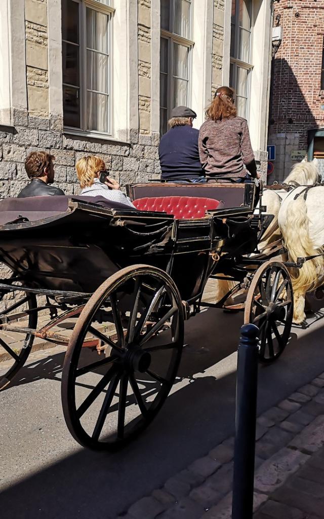 balade-caleche-cheval-chevaux-douai-douaisis-nord-france
