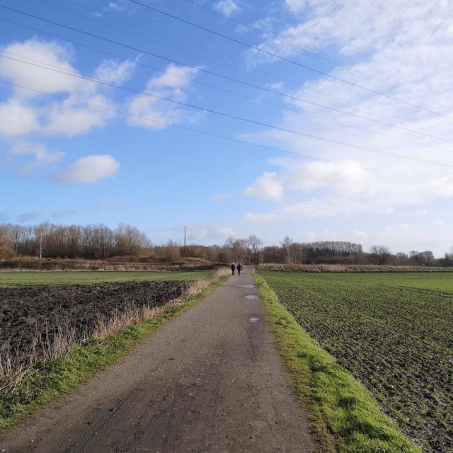 Jonction Chemin des Galibots et Boucle du vivier-Douaisis Nord France