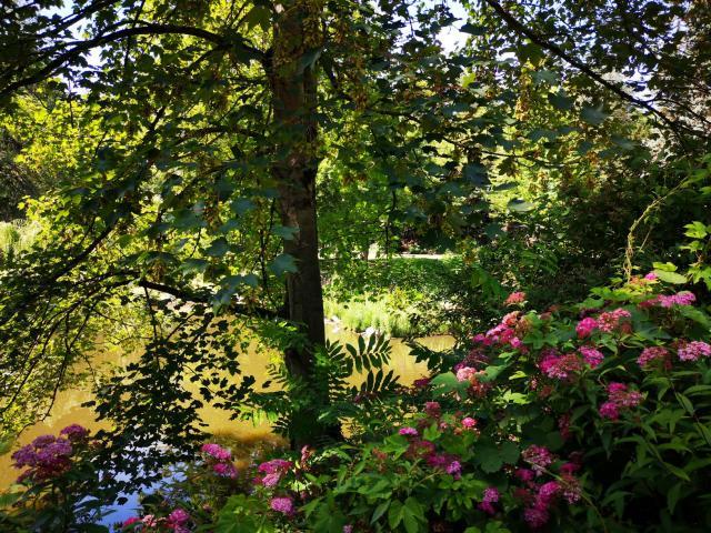 Parc Bertin Douai Nature Douaisis Nord France 3
