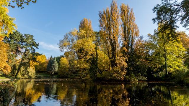 Parc Bertin Nature Bien être Douai Douaisis Nord France