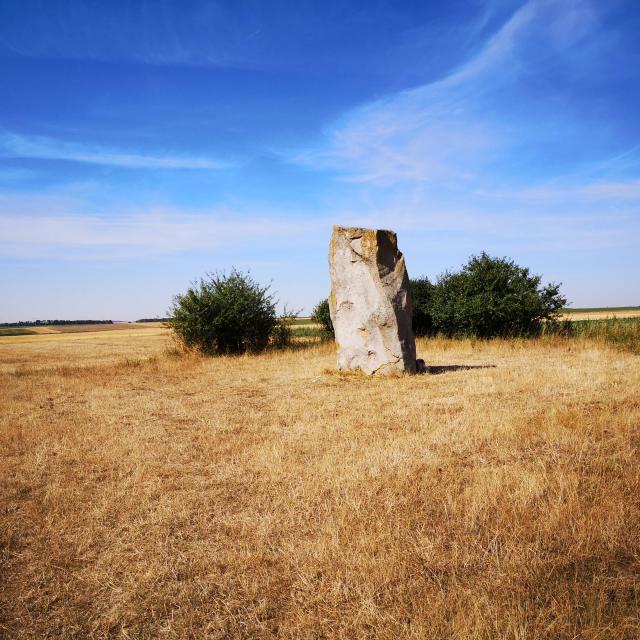 Menhir Pierre Du Diable Lécluse - (c) C.GOUET