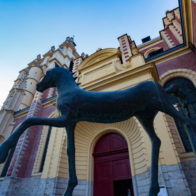 cheval-de-flanagan-douai-douaisis-nord-france.jpg