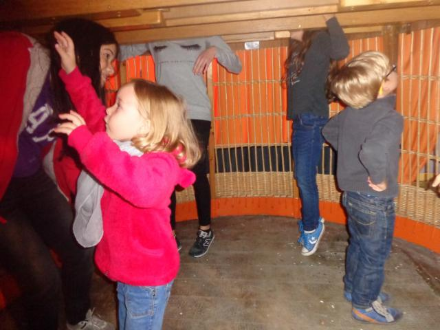 Mercredi Family Maison Des Geants Gayant Enfants Famille Douai Douaisis Nord France (30)