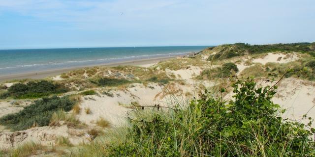 Grand Site des Dunes de Flandre en projet