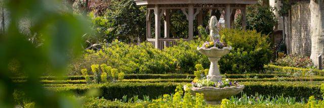 Nature Jardin De La Liberté 1