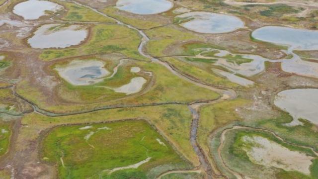 Réserve naturelle du Platier d'Oye vu du ciel
