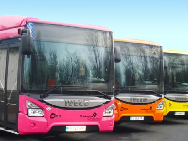 Dk Bus