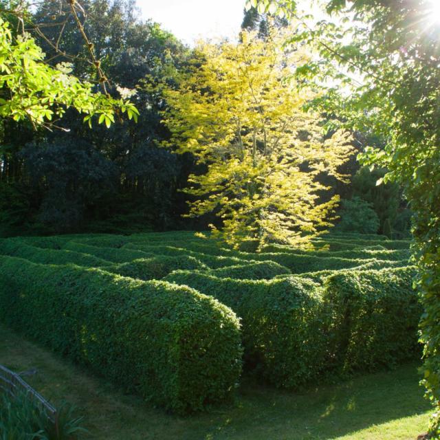 les Jardins de Cadiot : Le Labyrinthe