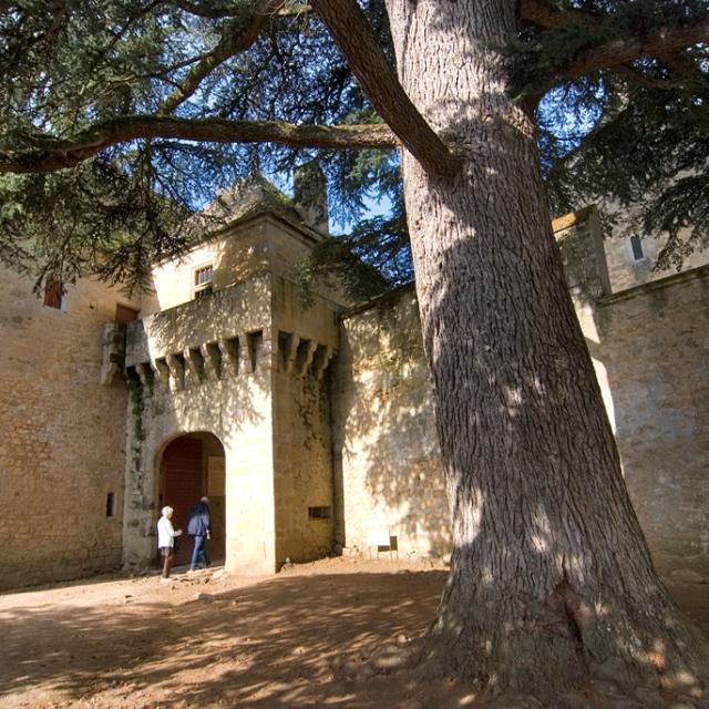 2eme Châtelet XVIème du Château Fénelon