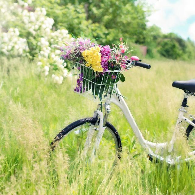 Vélo pleine nature en Périgord Noir