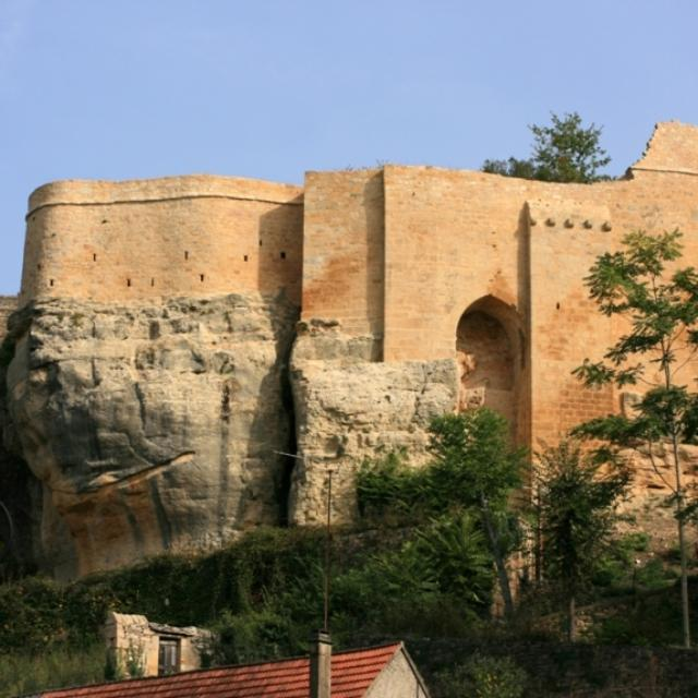 Château de Carlux
