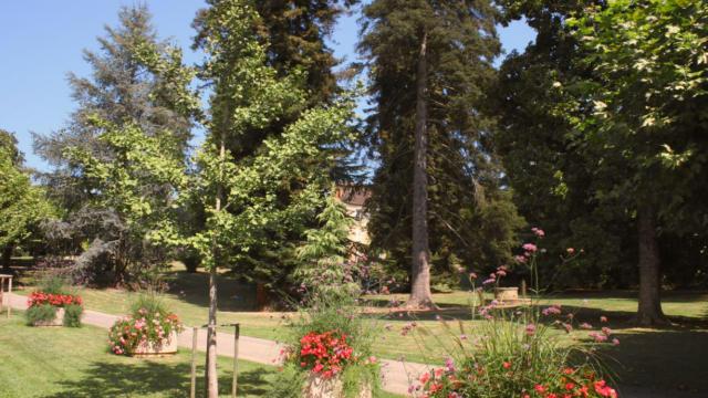 Jardin Du Plantier Sarlat