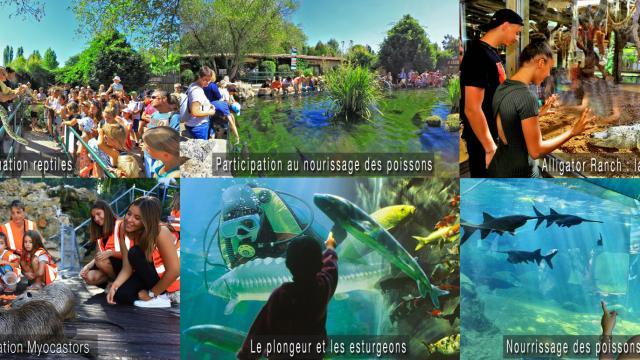 L'aquarium Périgord Noir