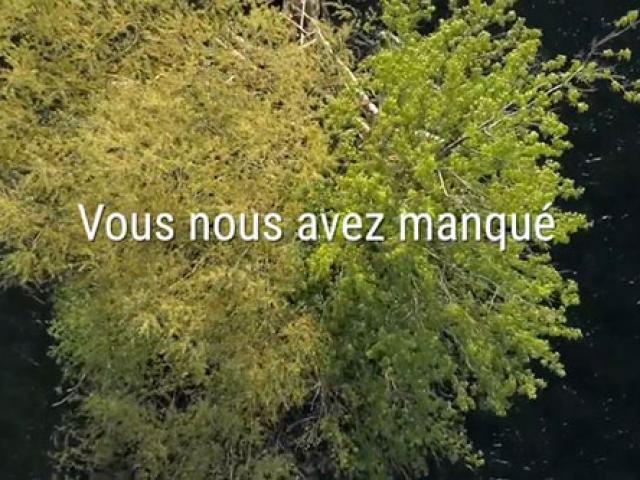 Bandeau Video2020