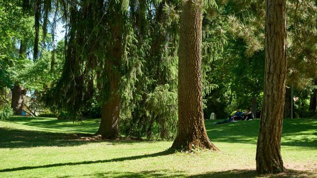 Jardin des plantes de Montauban