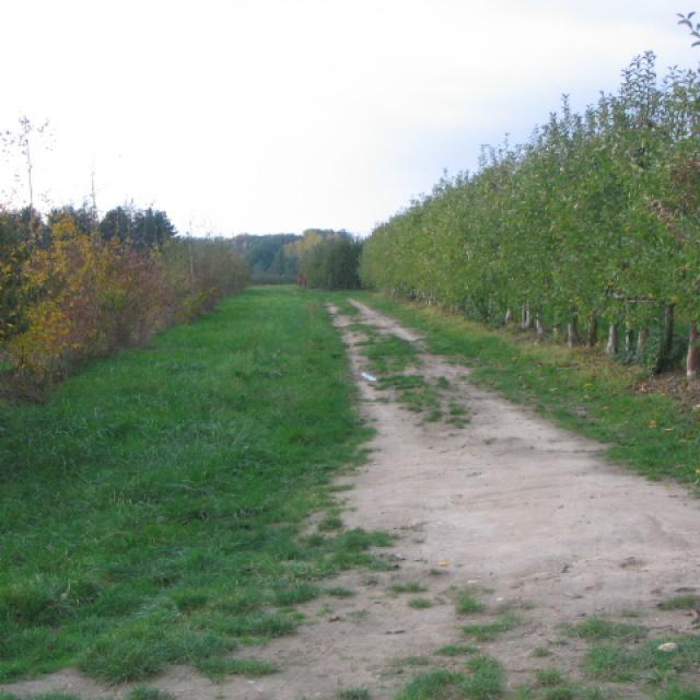 Sentiers Pédestres 2