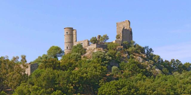 Chateau De Grimaud Var (4)