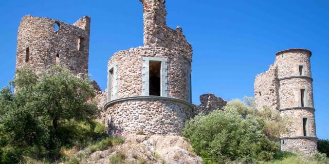 Chateau De Grimaud Var (5)