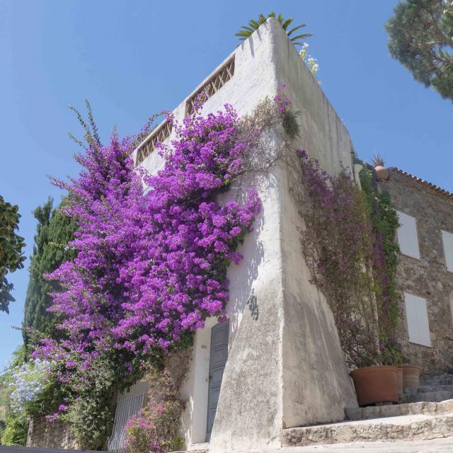 Grimaud Village Historique Var (14)