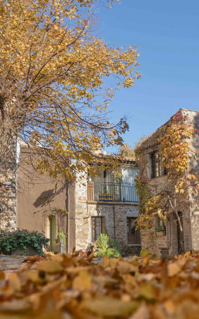 Automne Grimaud Var Provence (10)