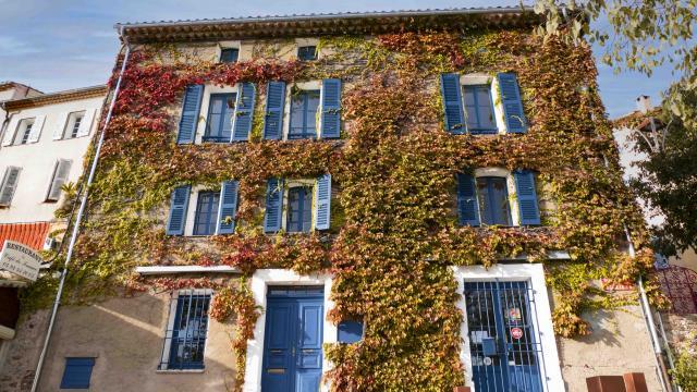 Automne Grimaud Var Provence (22)
