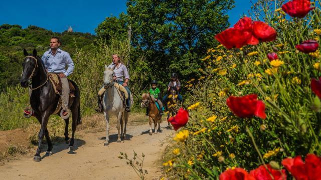 Balade Cheval Provence Grimaud Var (4)