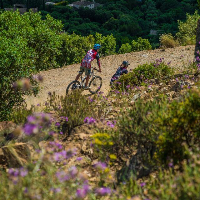 Balade Vélo Provence Grimaud Var (1)