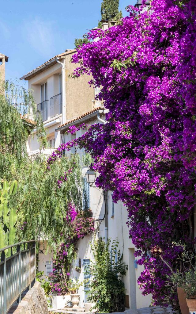Grimaud Village Historique Var (38)