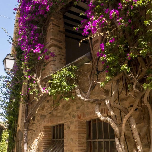 Grimaud Village Historique Var (52)