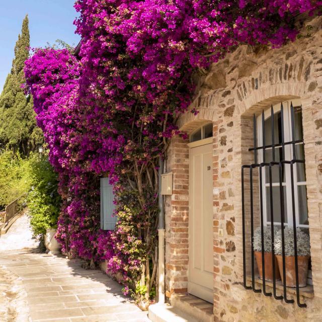 Grimaud Village Historique Var (53)