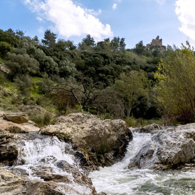Massif Des Maures Grimaud Var Provence (30)