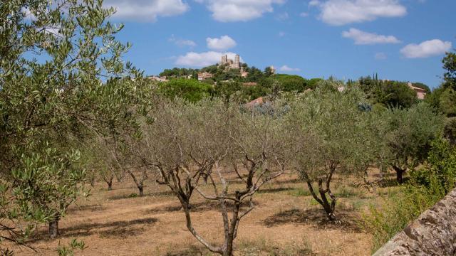 Massif des Maures Grimaud Var Provence