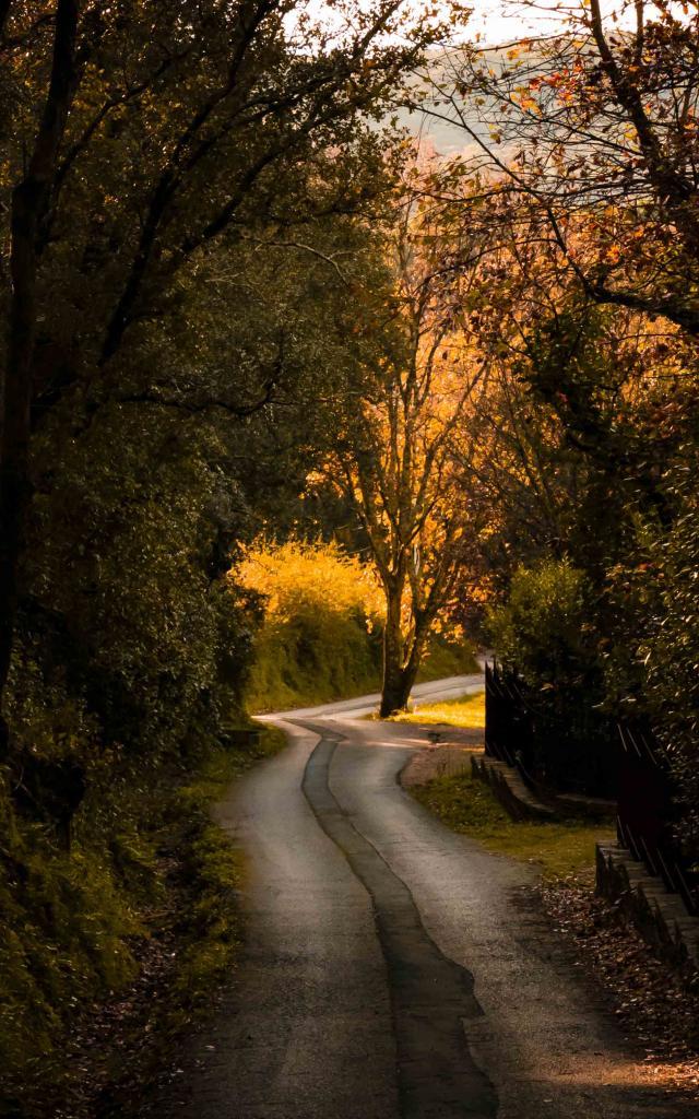 Sentier Castellane Grimaud Var (3)
