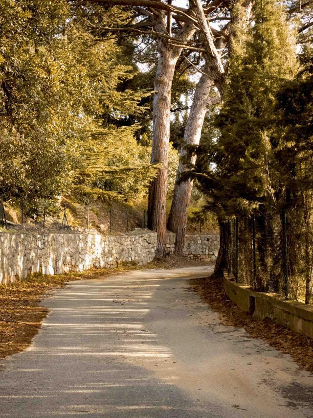 Sentier Castellane Grimaud Var (5)
