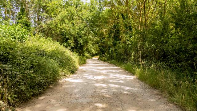Sentier Peyron Grimaud Var (10)