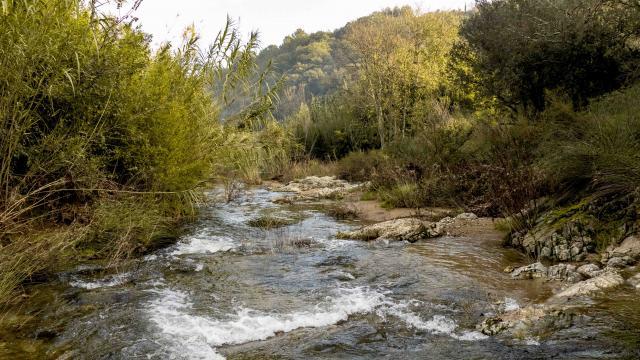 Sentier Pierredon Var (4)
