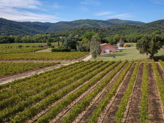 Vignoble Provence Grimaud Var (20)
