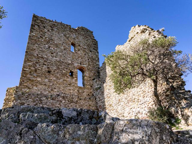 Chateau De Grimaud Var (15)