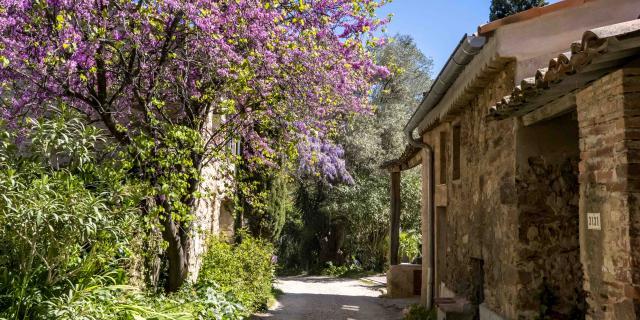Hameau De Grimaud Var Provence (1)