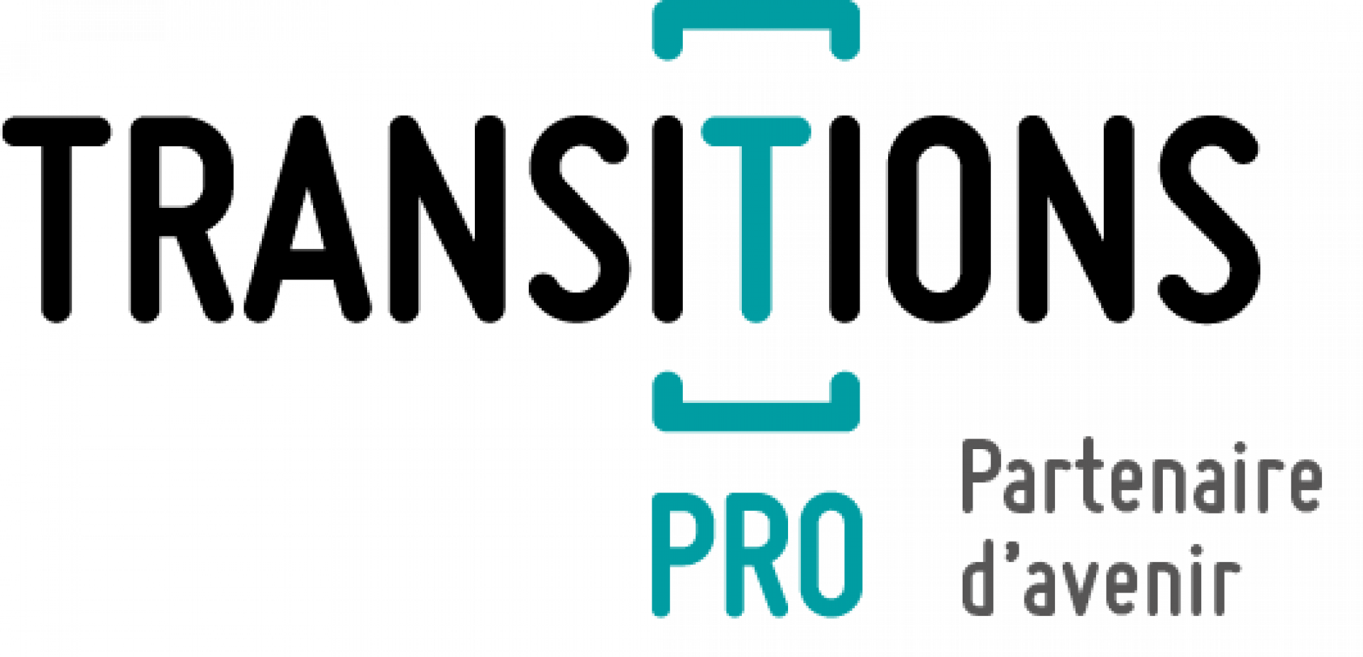 Logo Transitions Pro