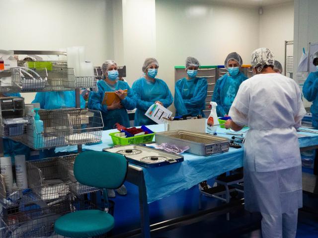 visite-sterilisation-gien-10.jpg