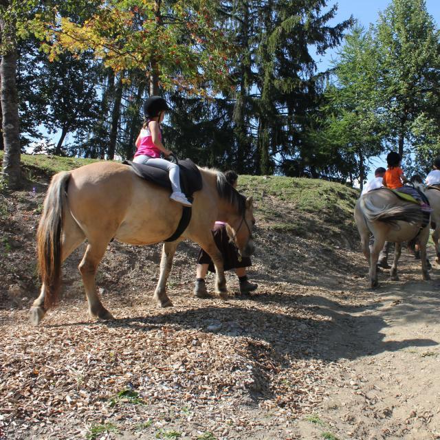 Sports équestres à La Tzoumaz en été